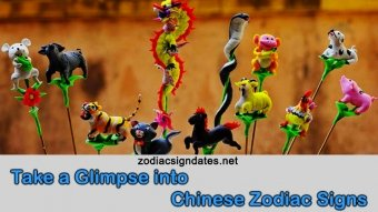 Take a Glimpse into Chinese Zodiac Signs